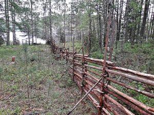 Puinen pisteaita on pystytetty pellon ja metsän rajalla – etäällä siintää järvi.