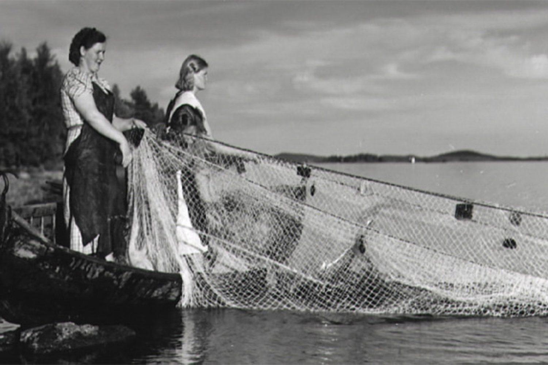 arknuottakalastustaiso